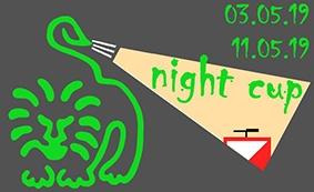 Ночное ориентирование